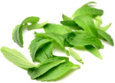 Stevia - Natural Sweetener Alternative